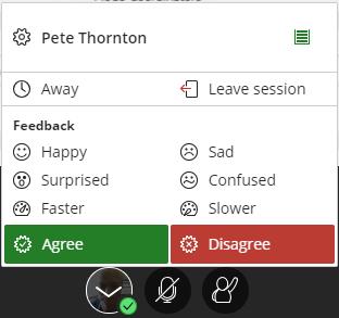 feedback panel